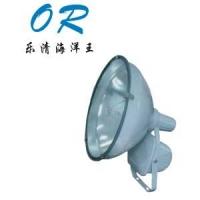 OR-ZT6900防水防尘防震投光灯