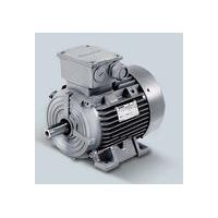 西门子低压电机西门子交流电机西门子异步电机西门子各系列电机