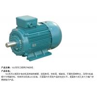 厦门高温电机、厦门高温真空泵生产厂家、价格【鹏亿】