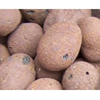 肇庆陶粒10-30mm 广州生产