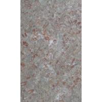 福隆石材-板材系列(化石板1)