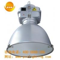 高效节能悬挂灯PG01