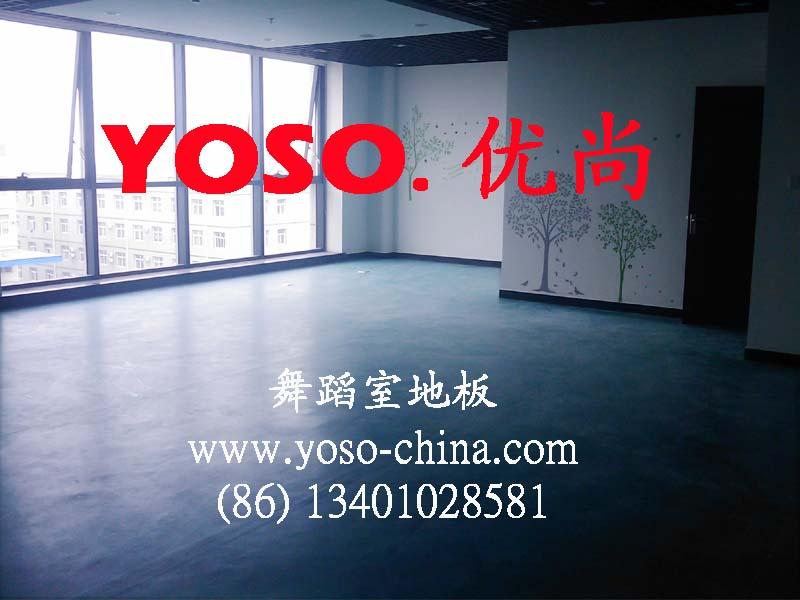 蹈教室地板价格,舞蹈教室地 北京福莱尔地板公司 山东建材网 高清图片