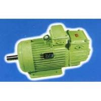 赛力盟电机—起重及冶金用三相异步电动机