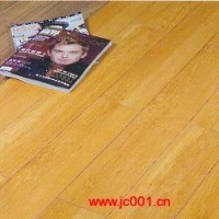圣罗娜强化复合地板-羽丝静音系列YS002