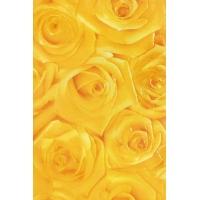 瑞诺瓷砖-墙砖-R53001A