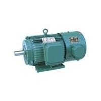 YVP系列变频高速专用三相异步电动机