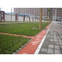 井字植草磚13783612686