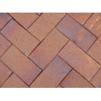供应窑变色烧结砖园林绿化陶土砖