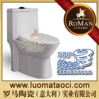 罗马陶瓷(意大利)双孔旋冲连体座便器