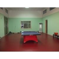 比赛用乒乓球地板