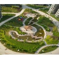 潍坊园林绿化 华曦园林绿化工程有限公司 专业设计施工