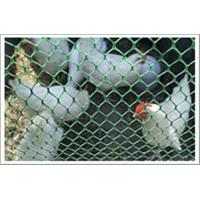 宿迁养鸡网鸡床网养鸭网鸭床网塑料平网水产养殖网