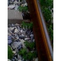 毛石 铁路工程级配碎石