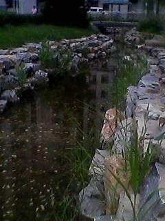 皮石 水冲石 驳岸石产品图片,山皮石 水冲石 驳岸石产品相册 北京房