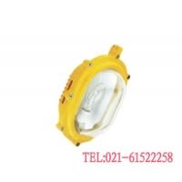 LED免维护防爆泛光灯