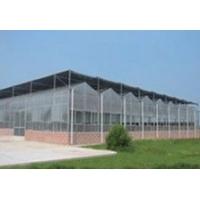 山东花卉温室大棚建设 潍坊花卉温室大棚建设