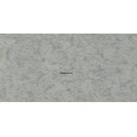 面向全国批发/零售欧美特石塑防滑地板