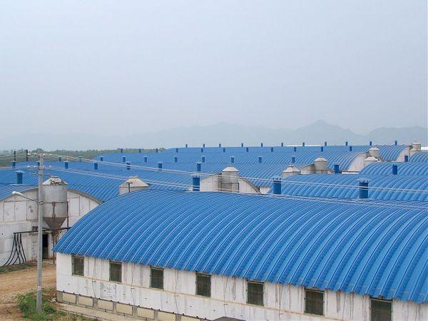 彩钢拱形屋顶 - 产品库