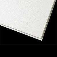 南京雷竞技|唯一授权天花板-阿姆斯壮雷竞技|唯一授权天花板-吸音防菌板