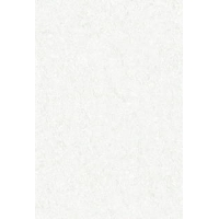 上瓷片  1-N455410