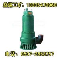BQW污水泵 防爆型BQW污水电泵 防爆污水电泵