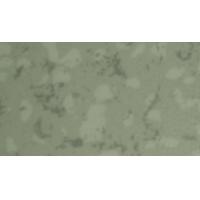 卷材pvc地板弹性地板品质高质保5年一卷发货