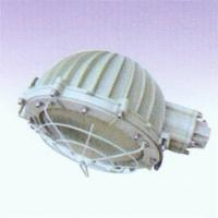 B口D60-250W防爆路灯