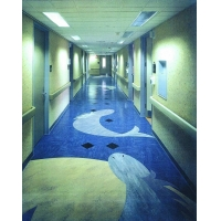 武汉塑胶地板,商业专用塑胶地板,博尼尔塑胶地板,武汉pvc地