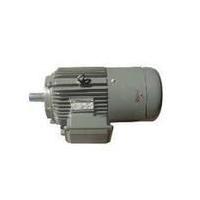 供应白银百胜电机网-大型电机-减速电机-变速电机