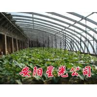 温室大棚支架机 星光农业科技有限公司