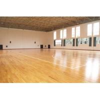 成都高新和平学校篮球馆—新建