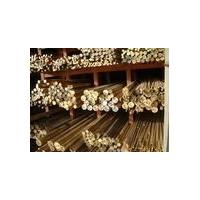供应HNi65-5镍黄铜板棒批发