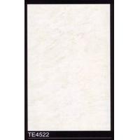 天纬墙砖真彩石系列300X450 TE4522