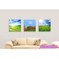 中国优质装饰画品牌有框装饰画无框装饰画