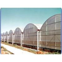 花卉温室大棚 青州花卉温室大棚建设