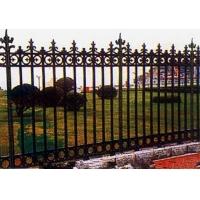 厂家特供铁艺护栏 十年专业制造铁艺围栏