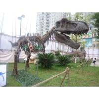 商场庆典办恐龙展