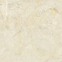 成都拉斐尔瓷砖意大利喷墨瓷片系列6602
