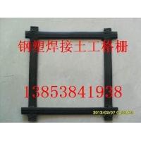 天津钢塑复合土工格栅厂家