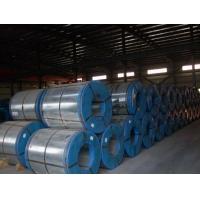 硅钢片|矽钢片|电工钢|上海搏沪