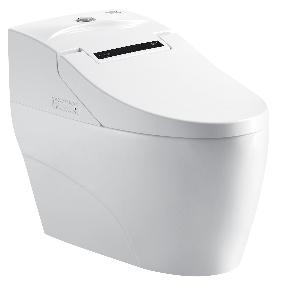 成都恒洁卫浴智能坐便器H0993