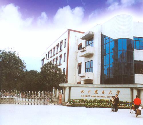 四川 农业大学教学大楼 全景 重庆市金泰新型防