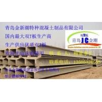 9至33米预应力混凝土双T板双坡板
