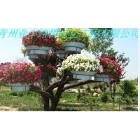 潍坊最好的立体组合花盆生产商 优价批发山东立体组合花盆