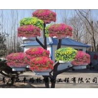 青州业丰路桥绿化工程有限公司 给您提供最优质的立体组合花盆