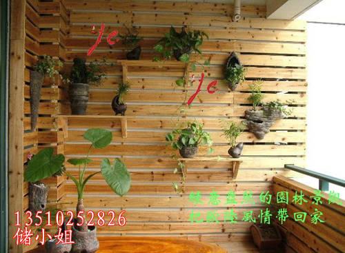 阳台墙壁花架设计图