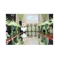 镜面地毯 婚庆地毯