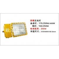 ODBE6023|防爆泛光灯|防爆泛光灯