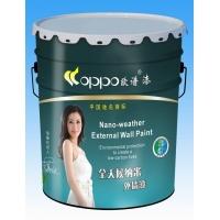 中国驰名商标 中国十大涂料品牌 区域代理 招商 加盟 创业